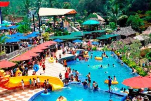 Rekomendasi Hotel Bintang 5 di Puncak Bogor